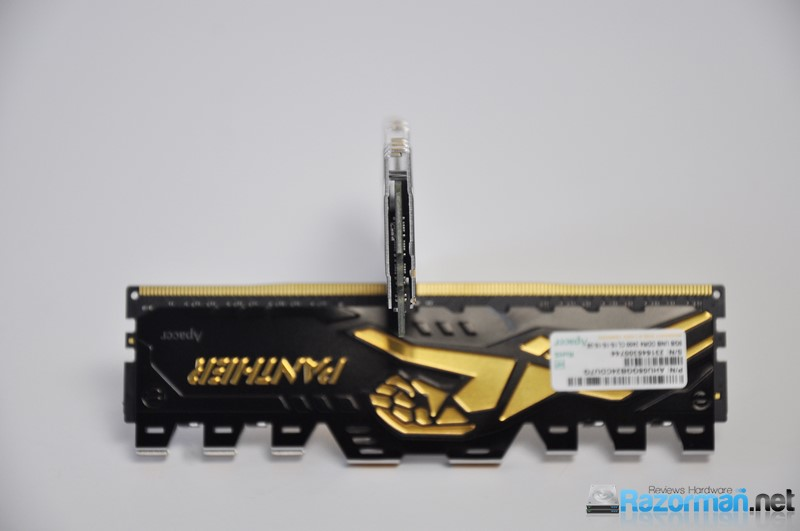 Review Apacer Panther DDR4 2400 Mhz 8