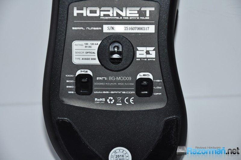 bg-hornet-15