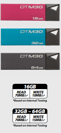 Kingston DTM30 16 Gb