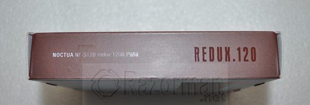 Noctua Redux (9)