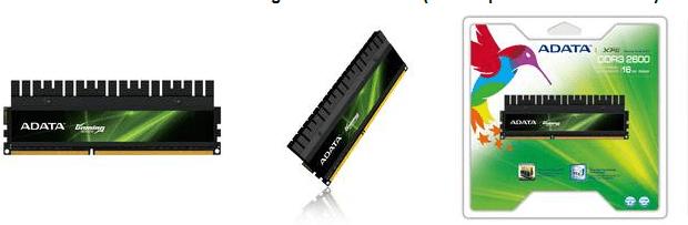 ADATA XPG Serie Gaming v2.0 DDR3 2600G